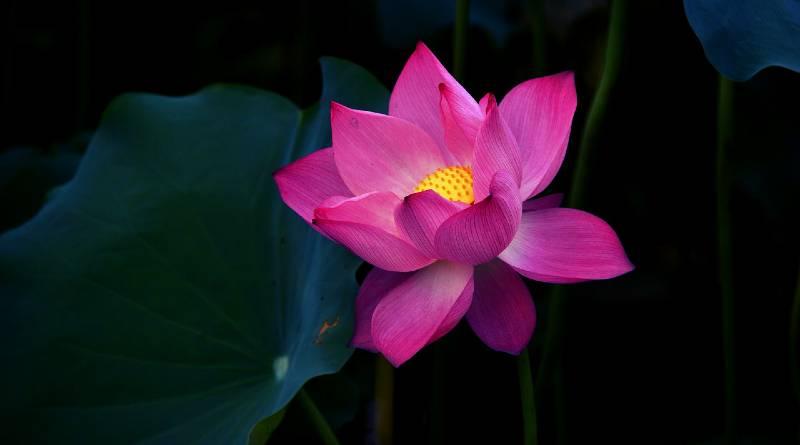 ज्ञानयोग पर तृतीय प्रवचन: स्वामी विवेकानंद - Gyan Yoga Par Tritiya Pravachan