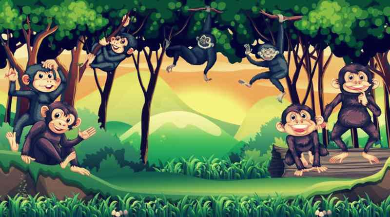 माली और मूर्ख बंदर - जातक कथा