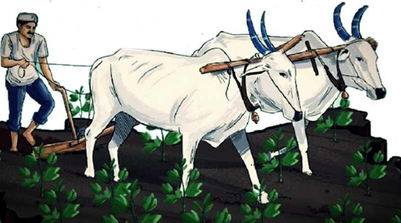भारतीय किसान पर निबंध – Bhartiya Kisan Par Nibandh in Hindi